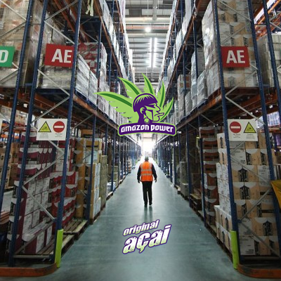 Acai wholesale oppurtunity for Food Distributors